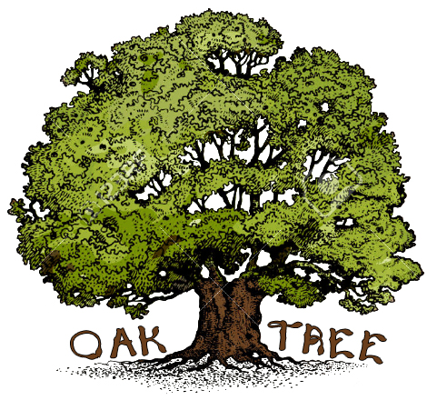 The Oak Tree 3
